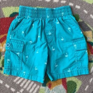 Boys 2T Palm Tree Print Teal Summer Shorts